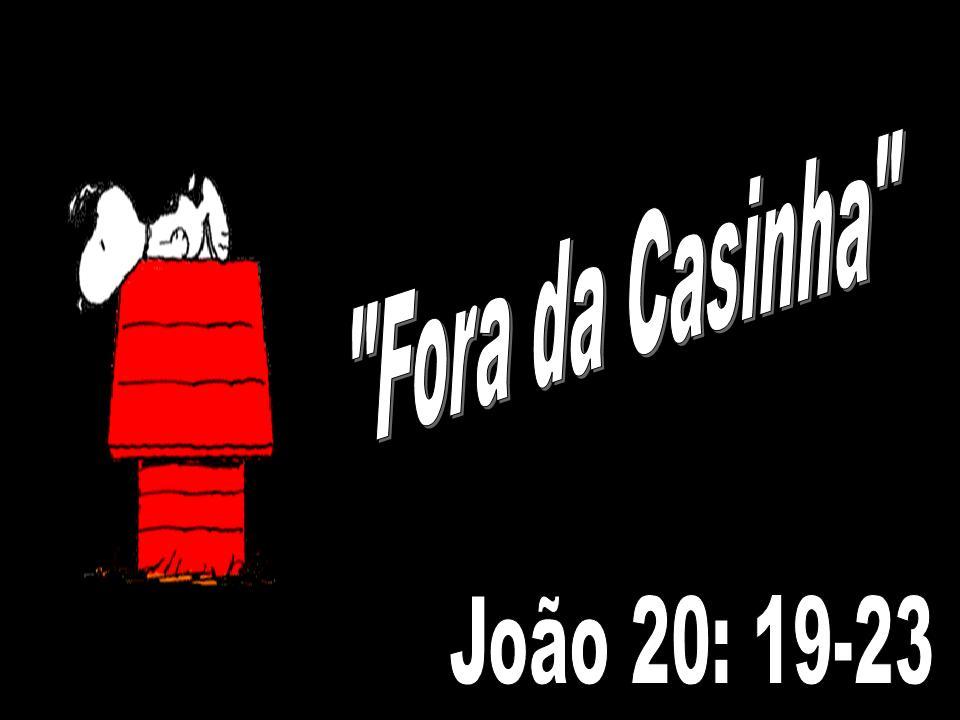 Fora da Casinha